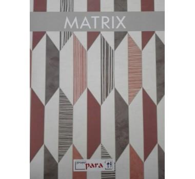 MATRIX-CONSULTAR